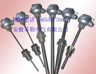 WRP2-131-高温贵金属(铂铑)热电偶(双)