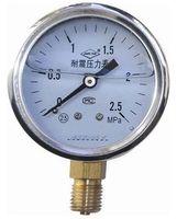 耐震压力表YN-60B
